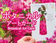 【ブーゲンフェア】ボタニカルアートカードSNS投稿キャンペーン